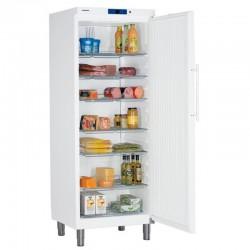 Chladnička GKv 6410